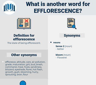 efflorescence, synonym efflorescence, another word for efflorescence, words like efflorescence, thesaurus efflorescence
