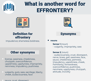 effrontery, synonym effrontery, another word for effrontery, words like effrontery, thesaurus effrontery