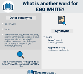 egg white, synonym egg white, another word for egg white, words like egg white, thesaurus egg white