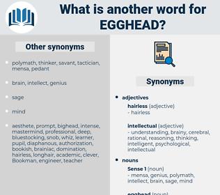 egghead, synonym egghead, another word for egghead, words like egghead, thesaurus egghead