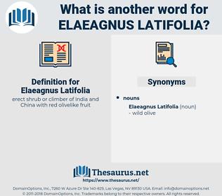 Elaeagnus Latifolia, synonym Elaeagnus Latifolia, another word for Elaeagnus Latifolia, words like Elaeagnus Latifolia, thesaurus Elaeagnus Latifolia