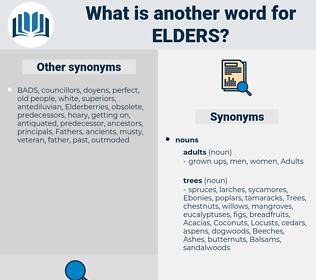 elders, synonym elders, another word for elders, words like elders, thesaurus elders
