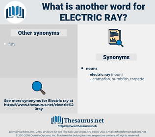 electric ray, synonym electric ray, another word for electric ray, words like electric ray, thesaurus electric ray