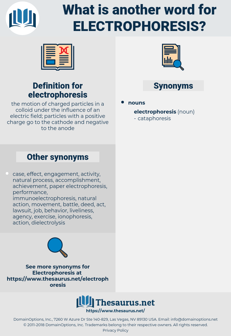 Synonyms For Electrophoresis Thesaurus Net
