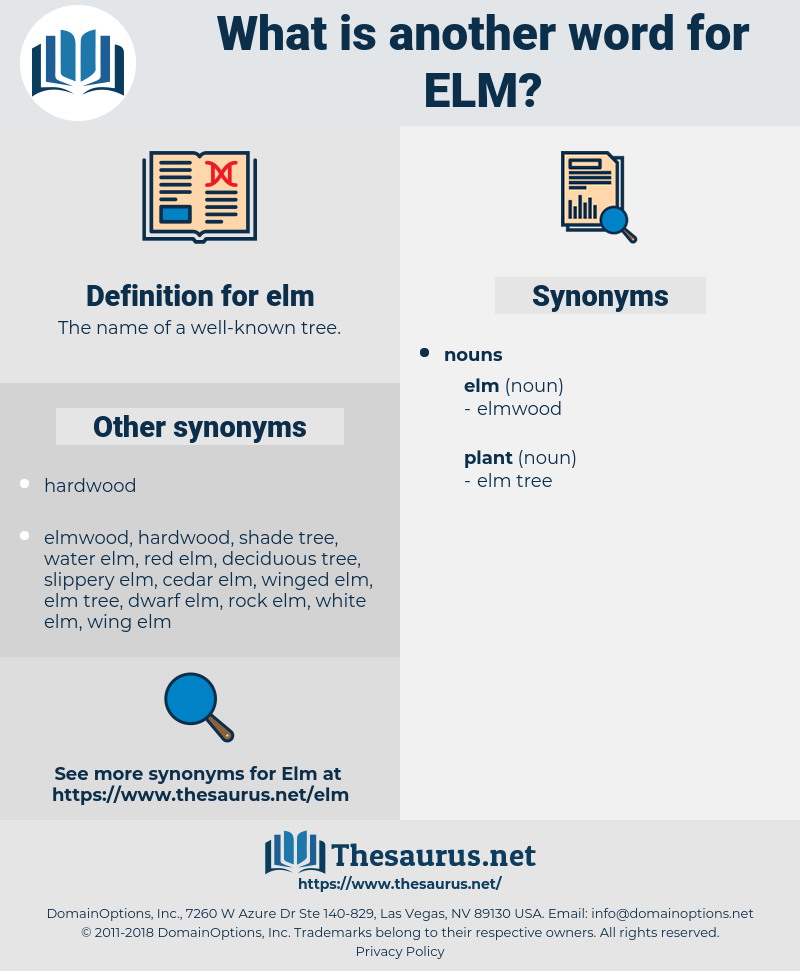 elm, synonym elm, another word for elm, words like elm, thesaurus elm