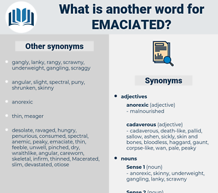 emaciated, synonym emaciated, another word for emaciated, words like emaciated, thesaurus emaciated