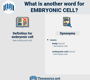 embryonic cell, synonym embryonic cell, another word for embryonic cell, words like embryonic cell, thesaurus embryonic cell