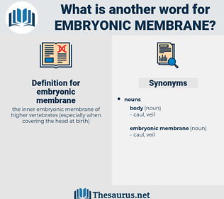 embryonic membrane, synonym embryonic membrane, another word for embryonic membrane, words like embryonic membrane, thesaurus embryonic membrane