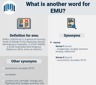 emu, synonym emu, another word for emu, words like emu, thesaurus emu