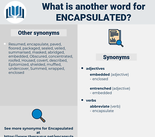encapsulated, synonym encapsulated, another word for encapsulated, words like encapsulated, thesaurus encapsulated