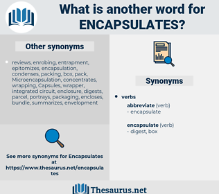 encapsulates, synonym encapsulates, another word for encapsulates, words like encapsulates, thesaurus encapsulates