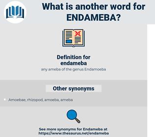 endameba, synonym endameba, another word for endameba, words like endameba, thesaurus endameba