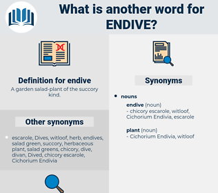 endive, synonym endive, another word for endive, words like endive, thesaurus endive