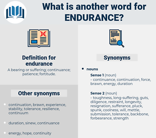 endurance, synonym endurance, another word for endurance, words like endurance, thesaurus endurance