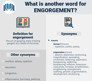 engorgement, synonym engorgement, another word for engorgement, words like engorgement, thesaurus engorgement