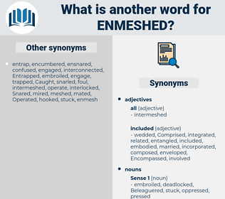 enmeshed, synonym enmeshed, another word for enmeshed, words like enmeshed, thesaurus enmeshed