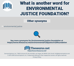 environmental justice foundation, synonym environmental justice foundation, another word for environmental justice foundation, words like environmental justice foundation, thesaurus environmental justice foundation