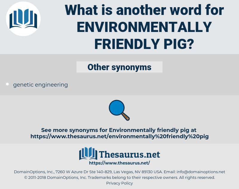 environmentally friendly pig, synonym environmentally friendly pig, another word for environmentally friendly pig, words like environmentally friendly pig, thesaurus environmentally friendly pig