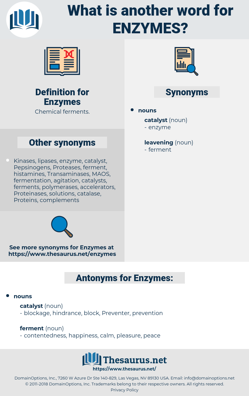 Enzymes, synonym Enzymes, another word for Enzymes, words like Enzymes, thesaurus Enzymes
