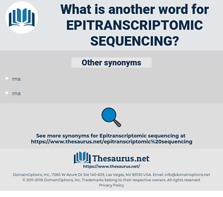 epitranscriptomic sequencing, synonym epitranscriptomic sequencing, another word for epitranscriptomic sequencing, words like epitranscriptomic sequencing, thesaurus epitranscriptomic sequencing