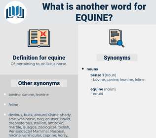 equine, synonym equine, another word for equine, words like equine, thesaurus equine