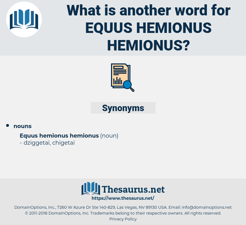 Equus Hemionus Hemionus, synonym Equus Hemionus Hemionus, another word for Equus Hemionus Hemionus, words like Equus Hemionus Hemionus, thesaurus Equus Hemionus Hemionus