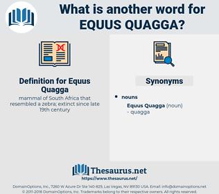 Equus Quagga, synonym Equus Quagga, another word for Equus Quagga, words like Equus Quagga, thesaurus Equus Quagga