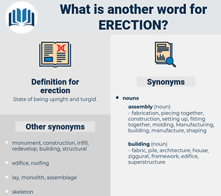 erection, synonym erection, another word for erection, words like erection, thesaurus erection