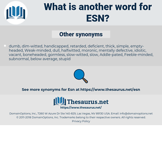 ESN, synonym ESN, another word for ESN, words like ESN, thesaurus ESN