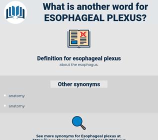 esophageal plexus, synonym esophageal plexus, another word for esophageal plexus, words like esophageal plexus, thesaurus esophageal plexus