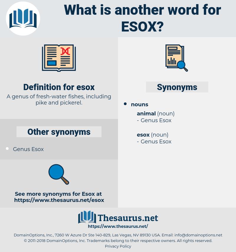 esox, synonym esox, another word for esox, words like esox, thesaurus esox