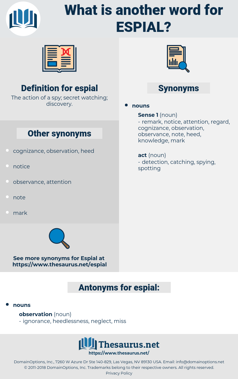 espial, synonym espial, another word for espial, words like espial, thesaurus espial