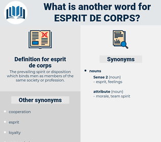 esprit de corps, synonym esprit de corps, another word for esprit de corps, words like esprit de corps, thesaurus esprit de corps