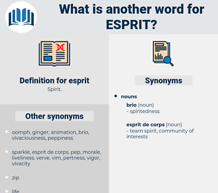 esprit, synonym esprit, another word for esprit, words like esprit, thesaurus esprit