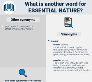 essential nature, synonym essential nature, another word for essential nature, words like essential nature, thesaurus essential nature
