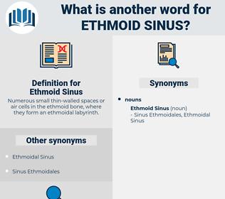 Ethmoid Sinus, synonym Ethmoid Sinus, another word for Ethmoid Sinus, words like Ethmoid Sinus, thesaurus Ethmoid Sinus