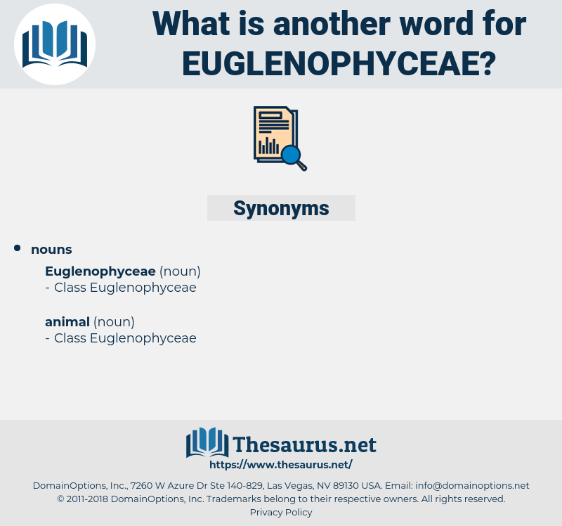 euglenophyceae, synonym euglenophyceae, another word for euglenophyceae, words like euglenophyceae, thesaurus euglenophyceae