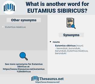 Eutamius Sibiricus, synonym Eutamius Sibiricus, another word for Eutamius Sibiricus, words like Eutamius Sibiricus, thesaurus Eutamius Sibiricus