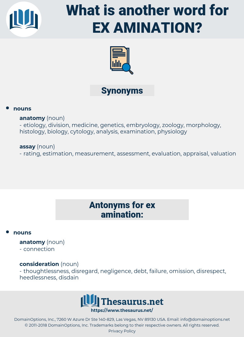 ex amination, synonym ex amination, another word for ex amination, words like ex amination, thesaurus ex amination