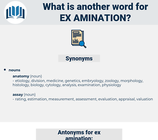 ex amination, synonym ex amination, another word for ex amination, words like ex amination, thesaurus ex amination