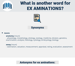 ex aminations, synonym ex aminations, another word for ex aminations, words like ex aminations, thesaurus ex aminations