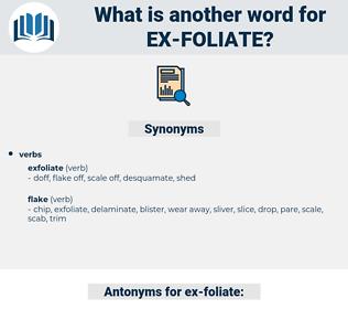 ex-foliate, synonym ex-foliate, another word for ex-foliate, words like ex-foliate, thesaurus ex-foliate
