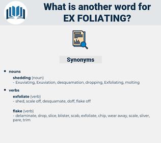 ex-foliating, synonym ex-foliating, another word for ex-foliating, words like ex-foliating, thesaurus ex-foliating