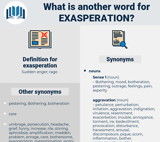 exasperation, synonym exasperation, another word for exasperation, words like exasperation, thesaurus exasperation