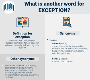 exception, synonym exception, another word for exception, words like exception, thesaurus exception