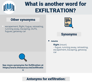 exfiltration, synonym exfiltration, another word for exfiltration, words like exfiltration, thesaurus exfiltration