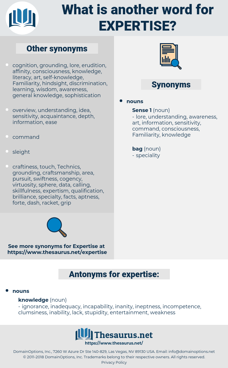 expertise, synonym expertise, another word for expertise, words like expertise, thesaurus expertise