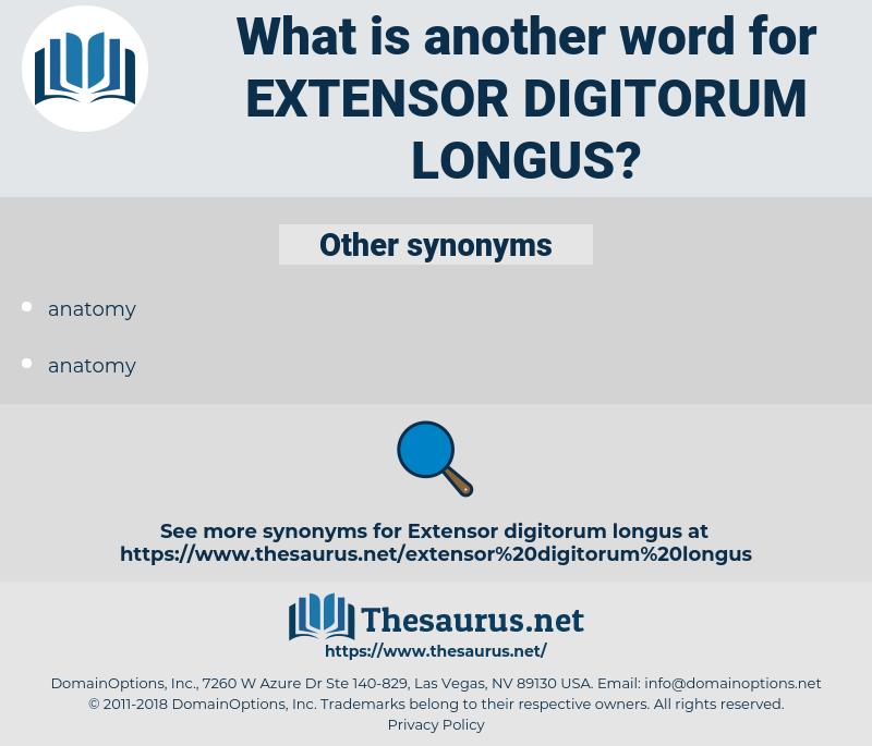 extensor digitorum longus, synonym extensor digitorum longus, another word for extensor digitorum longus, words like extensor digitorum longus, thesaurus extensor digitorum longus