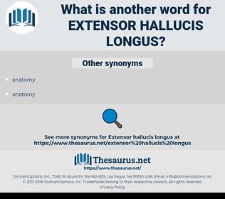 extensor hallucis longus, synonym extensor hallucis longus, another word for extensor hallucis longus, words like extensor hallucis longus, thesaurus extensor hallucis longus
