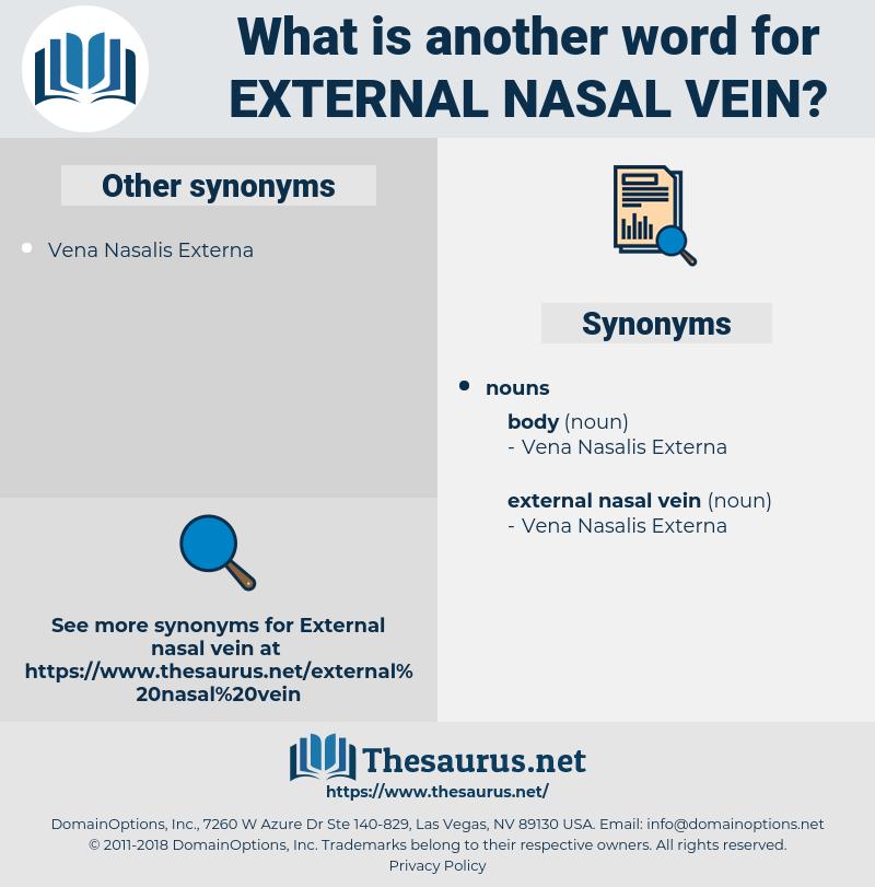 external nasal vein, synonym external nasal vein, another word for external nasal vein, words like external nasal vein, thesaurus external nasal vein